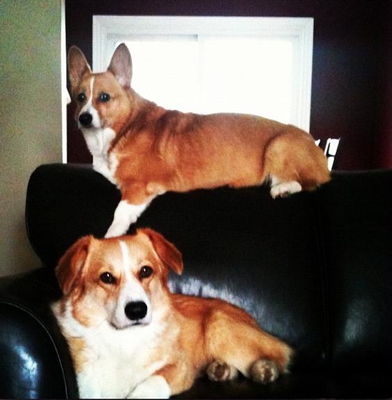 Zoe & Sammy